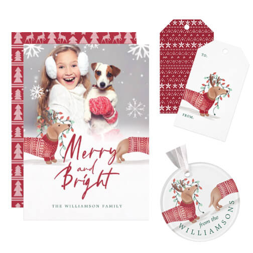 Dachshund Christmas Collection