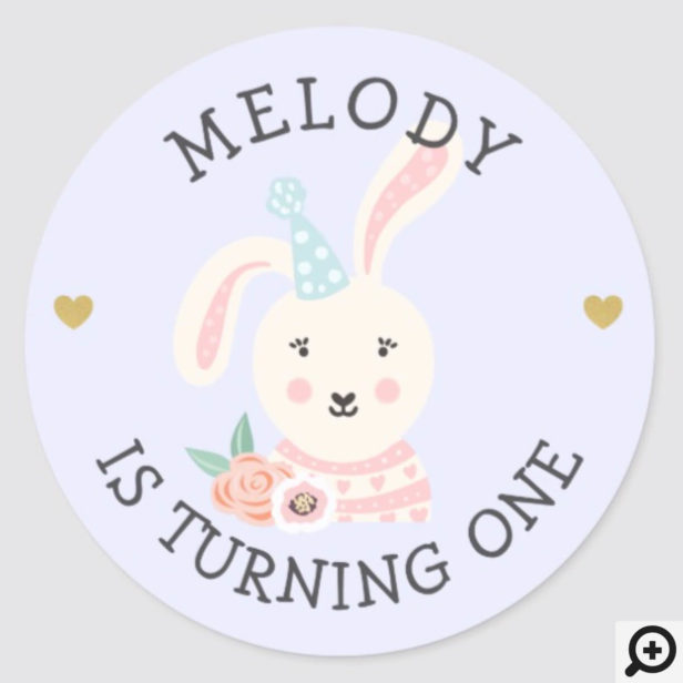 Cute Adorable Baby Rabbit Party Animal Classic Round Sticker