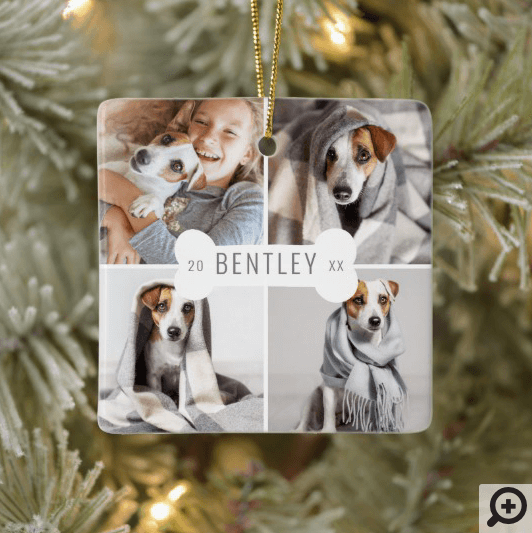 Dog Bone Modern Four Photo Pet Collage Ceramic Ornament