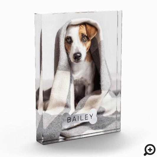Modern Minimal Pet Faux Silver Dog Bone Photo Block