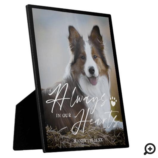 Always In Our Hearts Pet Photo Memorial Plaque