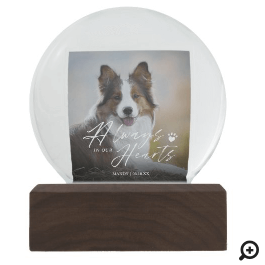 Always In Our Hearts Pet Photo Memorial Snow Globe